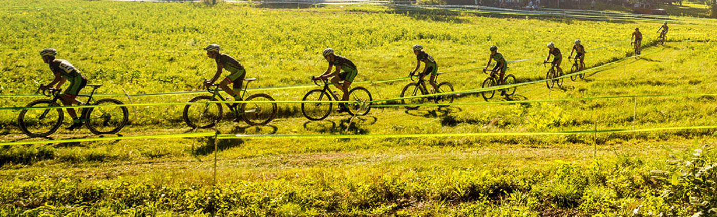 bike cannondale 2019